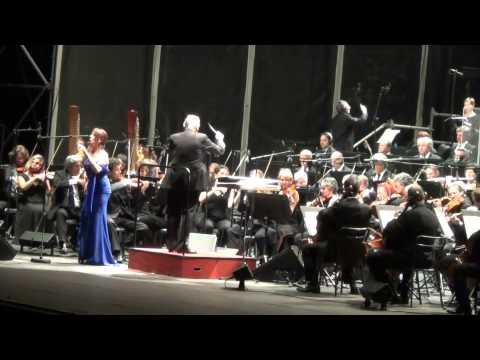 Ennio Morricone Arena Verona 2013 - Susanna Rigacci