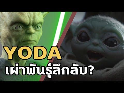 """เผ่าพันธ์ปริศนา """"โยดา"""" คือตัวอะไรกันแน่?? [Star Wars Day EP.5]  Comic World Daily"""