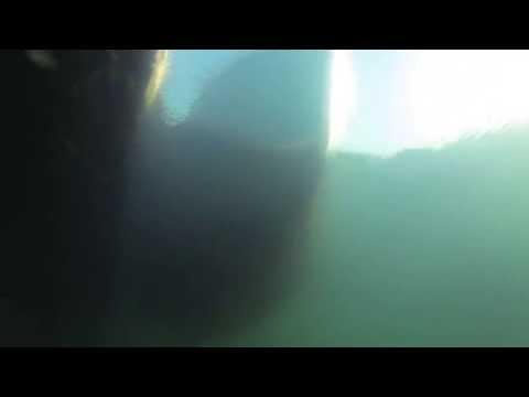 Underwater Bonavista Harbour, Newfoundland, Canada - GoPro First Test