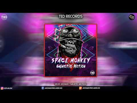 Space Monkey - Galactic Motion