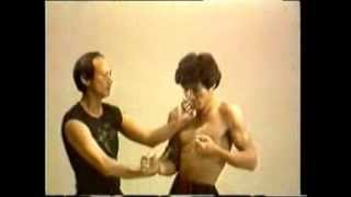 33 Lessons in Wing Chun, Instructional DVD