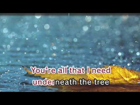 Kelly Clarkson - Underneath The Tree (Karaoke and Lyrics Version)