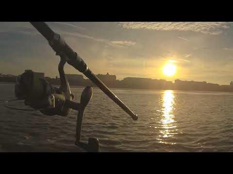 Fishing  The Gynn Wall Blackpool February 2019