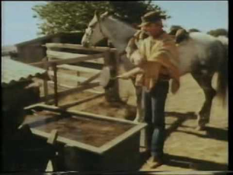 Hoges - Western Film Send Up.