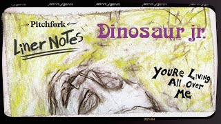 Nothing about Dinosaur Jr.'s chaotic music should have worked, but ...