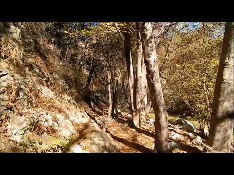 Lower Bear Creek Trail in the Angeles National Forest 28Nov17