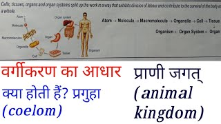 Coelom or body cavity prguha lecture 09 class 11 neet exam and all medical exams aw online education