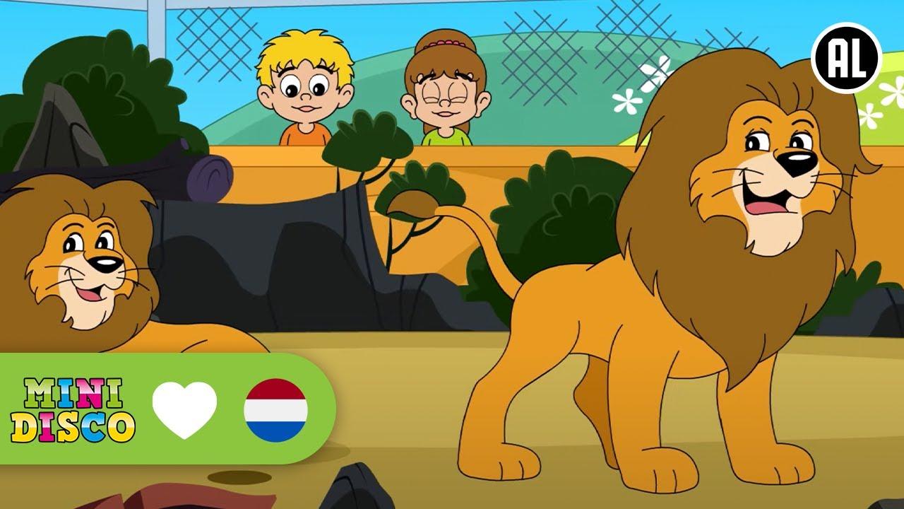 dierentuin-dd-company-minidisco