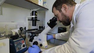 Вакцина от коронавируса антипрививочники против