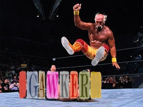 Hulk Hogan Sex Tape Trial v Gawker - Hogan Gets $25 Million More From Jury
