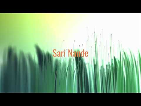 Sari Nande (Andy Tielman) - Cover by Schlagerburschi