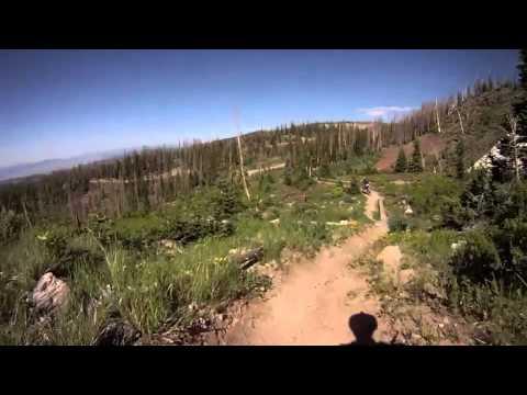 Brian Head Mountain Bike Park - Timberline Trail