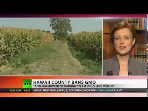 GMO Free Hawaii  'Big Island' bans biotech companies  - Hell-No To GMO