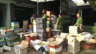 Tin tức 24h  :Bắt giữ 1,6 tấn hoa quả không rõ nguồn gốc