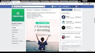 Обзор страниц Фэйсбук и Ютуб проекта Foresting