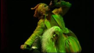 Mozart - Die Zauberflöte\ Papageno - Ein Mädchen oder Weibchen (Piotr Prochera)