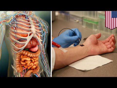 Cell regeneration: Nanochip can regrow organs, heal injuries with just one touch - TomoNews