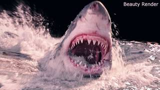 KöpekBalıgı Filmleri  Nasıl Çekiliyor İzleyin (Karanlık Sular)