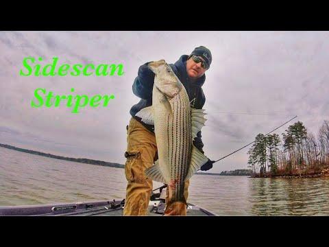 Sidescan Striper, Lake Murray SC