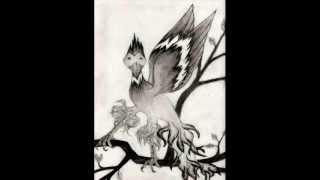 Exotic Bird Drawing