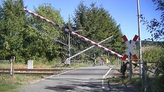 Spoorwegovergang Leun (D) // Railroad crossing // Bahnübergang