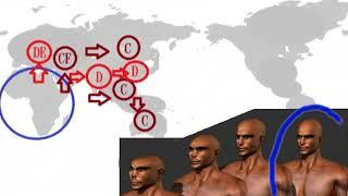 人類の歴史 ホモエレクトス ネアンデルタール人 ホモハビリス ホモサピエンス 東アジアと日本と中国の歴史。