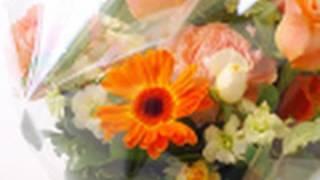 プロが教えるフラワーアレンジメントの基本 ( flower arrangement)
