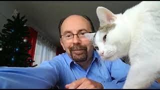 Cat Interrupts!!!!