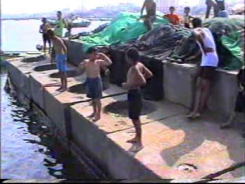 Swimming In Gaza : Elementary Swimming Class No (5) (2003)