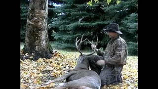 237-lb-gutted-bow-harvested-buck-oldy-video