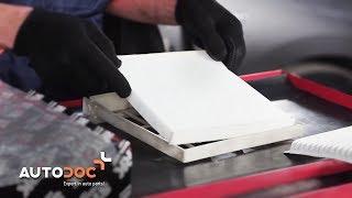 TOYOTA PRIUS -ohjevideot ja korjausoppaat – pidä autosi huippukunnosa
