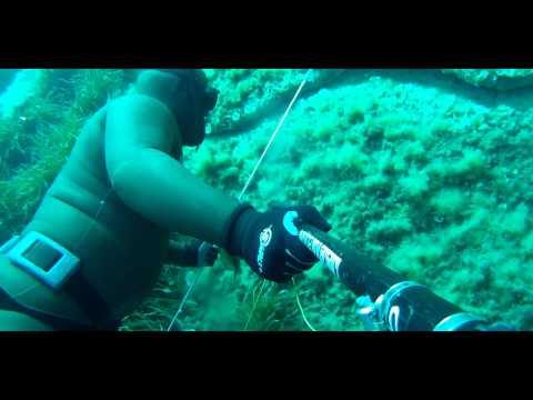 chasse sous marine en corse (fred ferri pisani)...