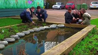 Stopping Flooding With Sustainable Gardens   Bang Goes The Theory   Brit Lab   BBC
