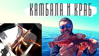 Ведра камбалы и краба Кайфуем на рыбалке