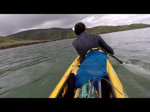 Free diving the wild west coast of Northland, New Zealand