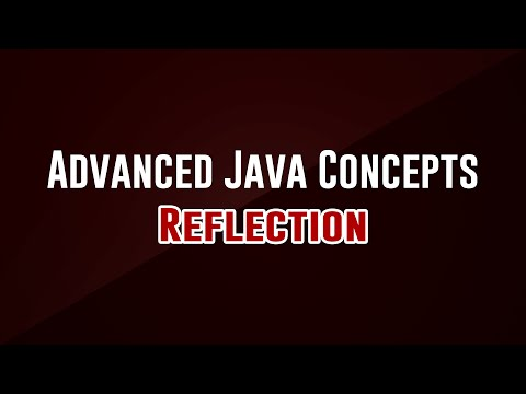 [advanced-programming-concepts]-reflection
