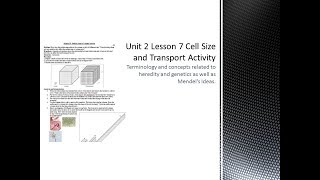 Science 10: Cell Size Activity