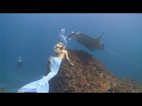 Real Mysterious Creatures Humanoid or Mermaids Found on Tape Real life Evidence