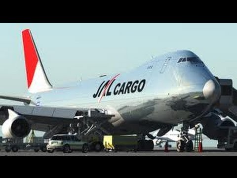 JAL Cargo - Interview @ Honolulu International Airport