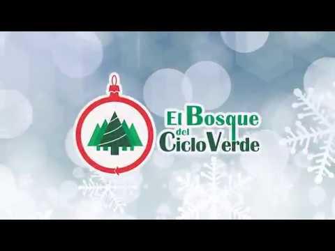 Calendario Bosque Magico 2019.El Bosque Del Ciclo Verde Escoge Y Corta Noel Parque