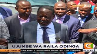 Raila Odinga : These are animals who must be dealt with beastly as they're dealing with the world