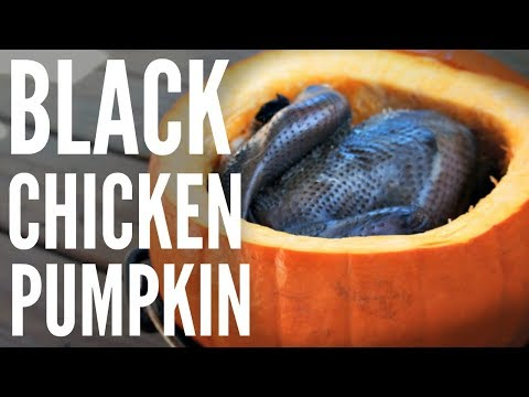 Cooking a Whole BLACK Silkie CHICKEN in a PUMPKIN - Chinese herbal soup