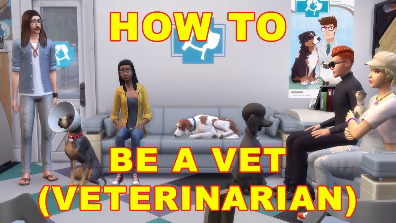 Sims 4 Cats Dogs How To Be A Vet Veterinarian Career Youtube