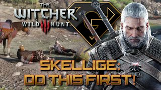 The Witcher 3: Wild Hunt Tips - Skellige - Do This FIRST! (Mild SPOILER)