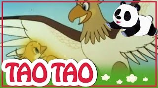 Tao Tao - 38 -  זהב הירד