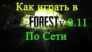 The Forest 0.11 ⇒ Как играть по сети через Hamachi [Пиратка + лицензия]