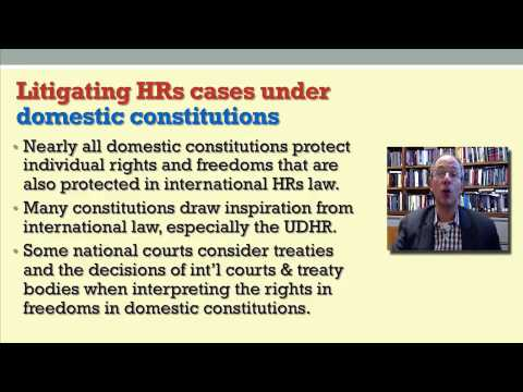 6   3   Lecture 3  Litigating human rights cases in national courts