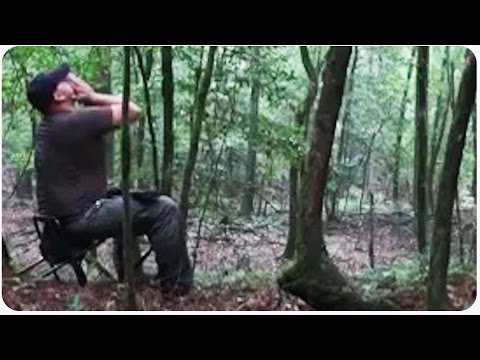 Professional Wolf Howler Gets Wildlife to Respond | Always Cry Wolf