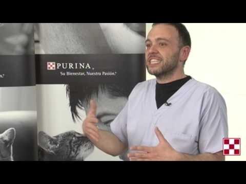 Hotel Erotica Megavideo 8