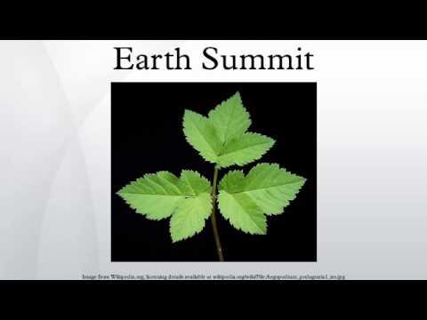 Earth Summit